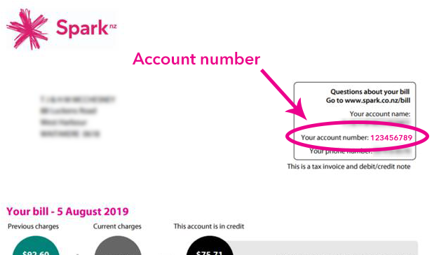 Manage and update my account | Spark NZ